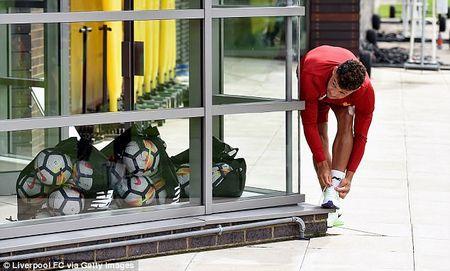 Chamberlain hao hung lan dau tap luyen o Liverpool - Anh 3