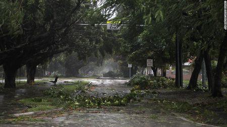 Kinh hoang sieu bao Irma tan pha bang Florida cua My - Anh 11