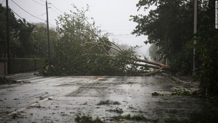 Kinh hoang sieu bao Irma tan pha bang Florida cua My - Anh 1