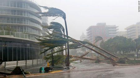 Kinh hoang sieu bao Irma tan pha bang Florida cua My - Anh 4