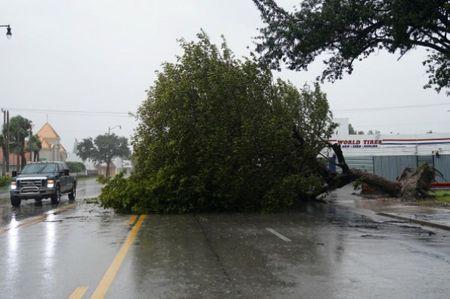Kinh hoang sieu bao Irma tan pha bang Florida cua My - Anh 8