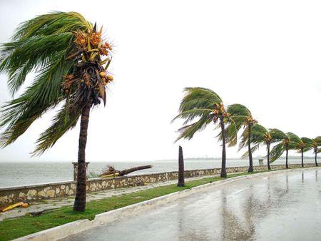 Bao Irma da den My, song cao 6 m van ap vao Cuba - Anh 4