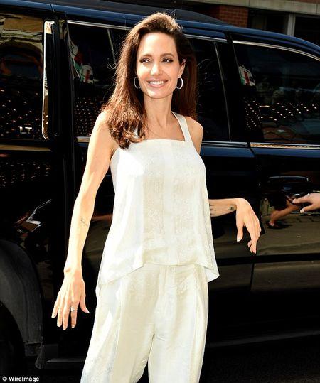 Angelina Jolie rang ngoi cung cac con tren tham do - Anh 2