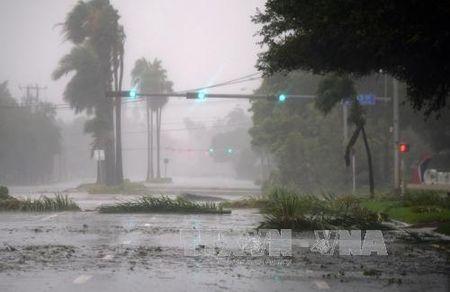 Bao Irma suy yeu nhung van dang lo ngai - Anh 1