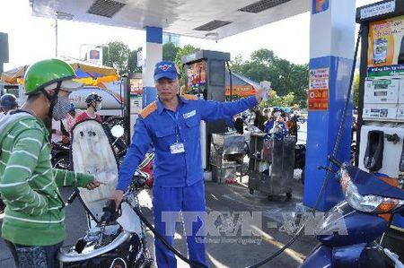 Petrolimex se thay the hoan toan xang RON 92 bang xang E5 - Anh 1