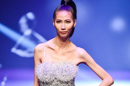 Cao Ngan gay tro xuong va chuyen hieu ung cua dam dong - Anh 3