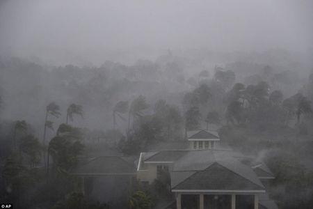 Sieu bao 'quai vat' Irma trut cuong no len Florida, toan bo chim trong bien nuoc - Anh 1