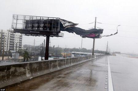 Sieu bao 'quai vat' Irma trut cuong no len Florida, toan bo chim trong bien nuoc - Anh 5
