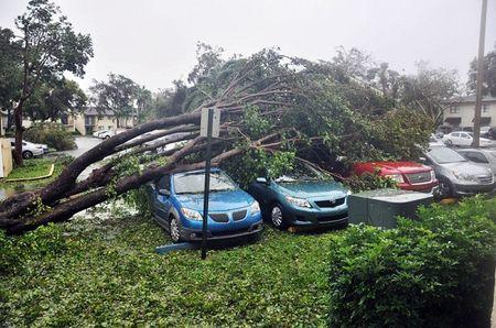 Sieu bao Irma 'quat nat' Florida - Anh 3