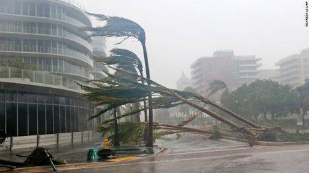 Sieu bao Irma 'quat nat' Florida - Anh 4