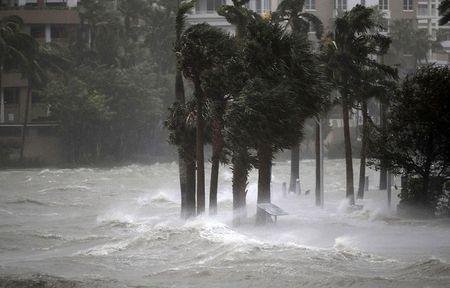 Sieu bao Irma 'quat nat' Florida - Anh 5