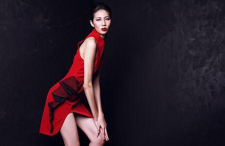 Dau an rieng 'Thanh do' Cao Ngan tren san dien chu T - Anh 6