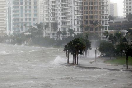 Sieu bao Irma tan cong Florida - Anh 1