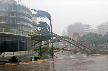 Sieu bao Irma tan cong Florida - Anh 2