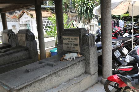 TP HCM: Khu lang mo danh nhan Truong Vinh Ky bi xam lan, xuong cap nghiem trong - Anh 6