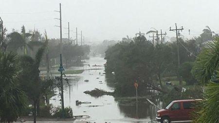 Bao Irma tan cong, ong Trump ban bo tinh trang khan cap o Florida - Anh 1