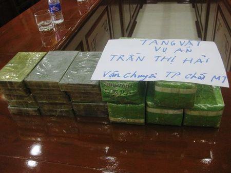 Bat doi tuong van chuyen 15 banh heroin tren xe khach - Anh 2