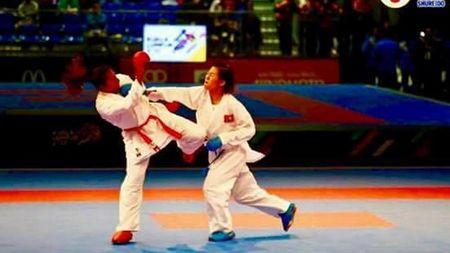 Vo sy Viet Nam gianh HCV lich su tai giai karatedo vo dich the gioi - Anh 1