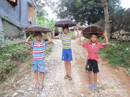 Chieu doc san ca suoi cua tre em vung cao Nghe An - Anh 2