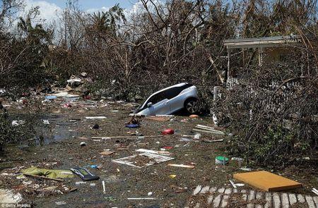 Sieu bao 'quai vat' Irma da 'can xe' Florida nhu the nao? - Anh 4