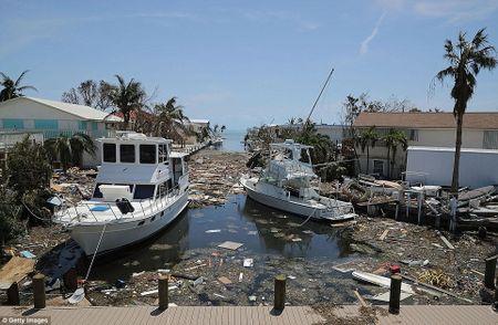 Sieu bao 'quai vat' Irma da 'can xe' Florida nhu the nao? - Anh 5