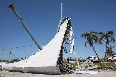 Sieu bao 'quai vat' Irma da 'can xe' Florida nhu the nao? - Anh 6