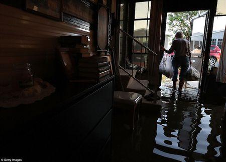 Sieu bao 'quai vat' Irma da 'can xe' Florida nhu the nao? - Anh 9