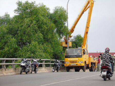 Quang Binh: Hon 20.000 ho dan trong vung nguy hiem cua Bao so 10 - Anh 4