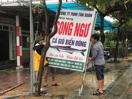 Nguoi dan Nghe An, Ha Tinh 'chay dua' voi bao so 10 - Anh 3