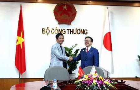 Viet Nam-Nhat Ban: Thuc day hop tac cong nghiep, thuong mai va nang luong - Anh 2