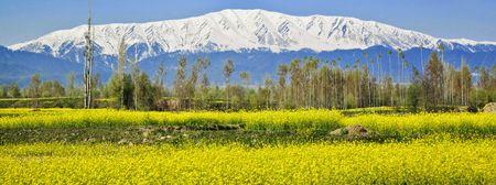 Canh sac than tien o Kashmir - Anh 4