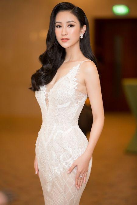 Ha Thu nhan vuong mien, chinh thuc tham gia dau truong nhan sac Hoa hau Trai dat 2017 - Anh 1