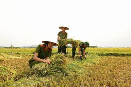 Cong an Ha Tinh sat canh cung nguoi dan ung pho bao so 10 - Anh 2