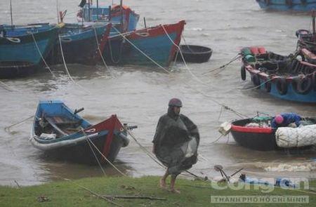 Quang Tri va Thua Thien - Hue toi boi vi bao so 10 - Anh 1