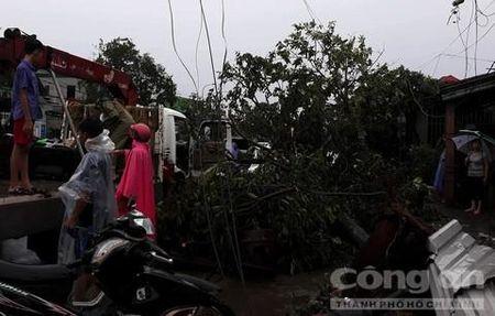 Quang Tri va Thua Thien - Hue toi boi vi bao so 10 - Anh 2