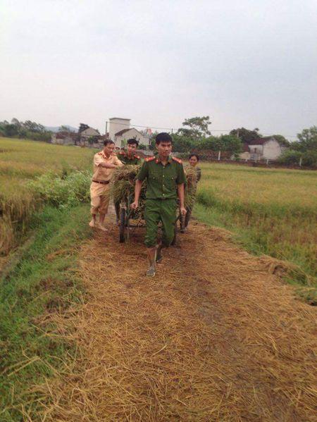 Thanh Hoa: Cong an Dong Son xuong dong giup dan chong bao so 10 - Anh 4