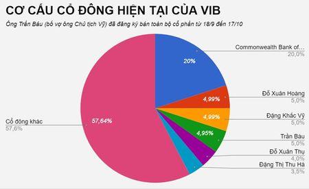 Vo chu tich VIB muon chi hang tram ty mua co phieu - Anh 1