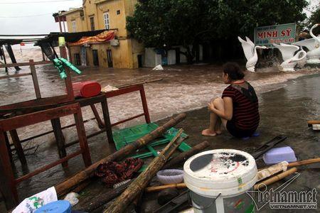 Do Son 'that thu', Nam Dinh song danh vao tan nha - Anh 14