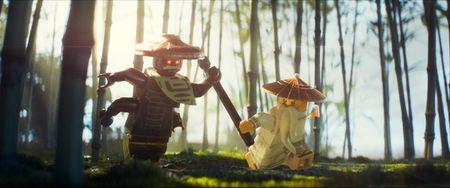 Thanh Long gui loi chao toi fan ham mo cua Lego Ninjago - Anh 10