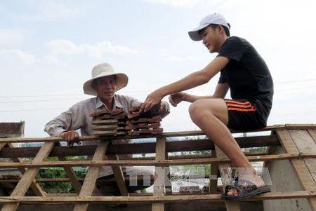 Ha Tinh khac phuc hau qua bao so 10 - Anh 6