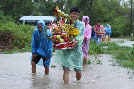Quang Tri: Chu re vuot lu, doi mua ruoc dau ngay bao - Anh 2