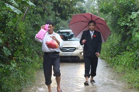 Quang Tri: Chu re vuot lu, doi mua ruoc dau ngay bao - Anh 3