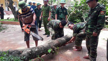 Thu tuong Nguyen Xuan Phuc yeu cau tinh Nghe An som khac phuc hau qua sau bao so 10 - Anh 2