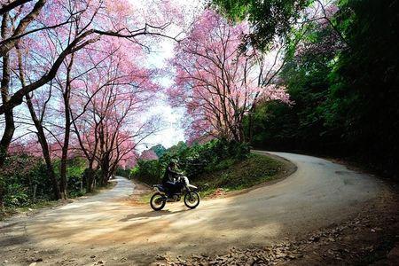 Nhung cung duong dep tai Thai Lan: Lai xe 100km quanh co o Mae Sa – Samoeng - Anh 1