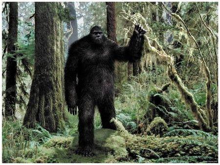 Nhung lan 'cham tran' kinh hoang giua nguoi va quai vat Bigfoot - Anh 1