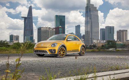 Volkswagen Beetle va Passat vua ra mat co gi dac biet? - Anh 1