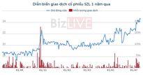 SZL: Bán 4 nhà xưởng, lợi nhuận tăng đột biến vượt kế hoạch cả năm