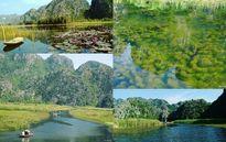 Chẳng cần đi đâu xa, cuối tuần khám phá đầm Vân Long ở Ninh Bình là đã đủ mãn nguyện