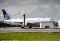 Hành khách của United Airlines sơ tán vì bọ cạp trên máy bay