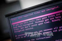 Europol cảnh báo các vụ tấn công mạng mới tinh vi hơn WannaCry
